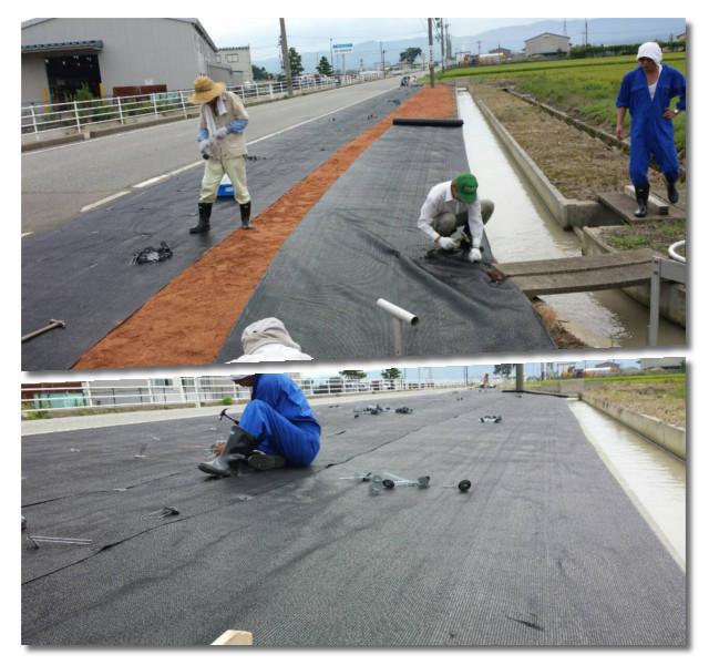 会社近く字田子島道路の路肩03